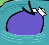Quack swimming (SLF)
