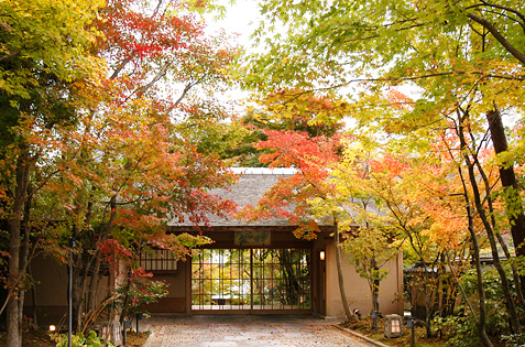 Autumn gate in Japan