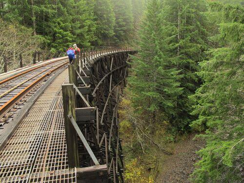 Oregon-coast-range-hikes-salmonberry-river-wolf