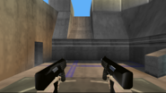 Perfect Dark Weapons (20)