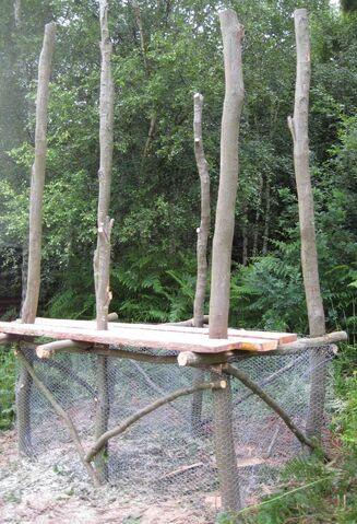 File:Treebog3.jpg