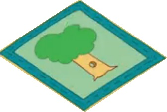 File:Tree patch.jpg