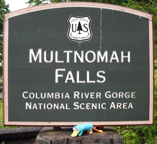File:Multnoma Falls - Perry on the sign.jpg