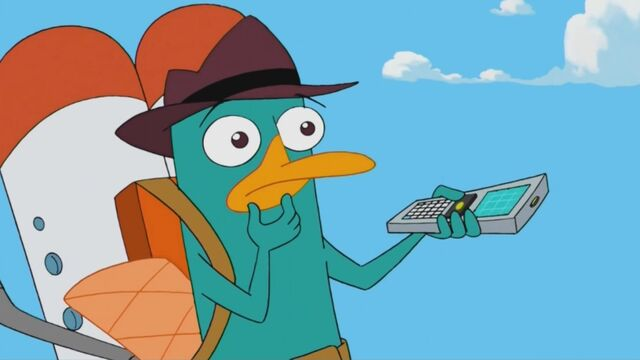 File:Puzzled Perry.jpg