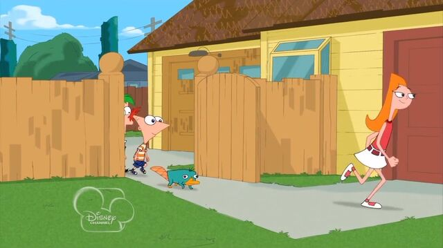 File:Phineas and Ferb Interrupted Image157.jpg