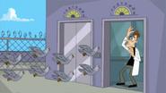 PigeonsCornerDoof