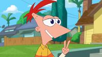 Phineas says in two weeks
