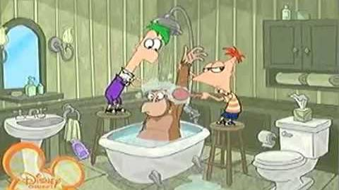 Phineas and Ferb Norwegian intro