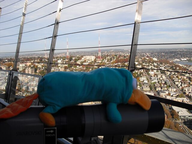 File:Perry at the Space Needle.jpg