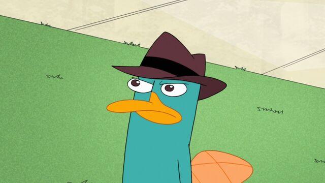 File:Perry staring at Doof.jpg