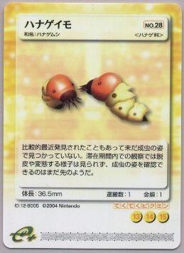 File:Y5.JPG