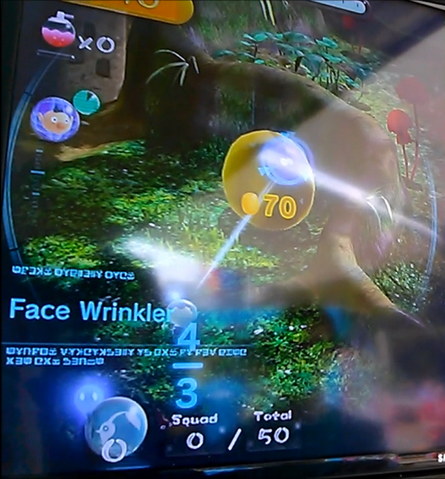 File:Face wrinkler scan.PNG