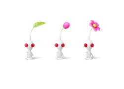 HD White pikmin