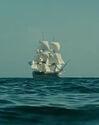 HMS ENDEAVOUR GULLS