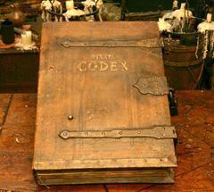 File:POTCPocketModelPirataCodex.JPG