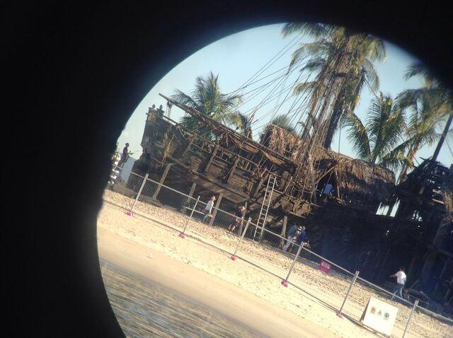 File:Gull beached.jpg
