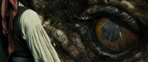 Kraken eye