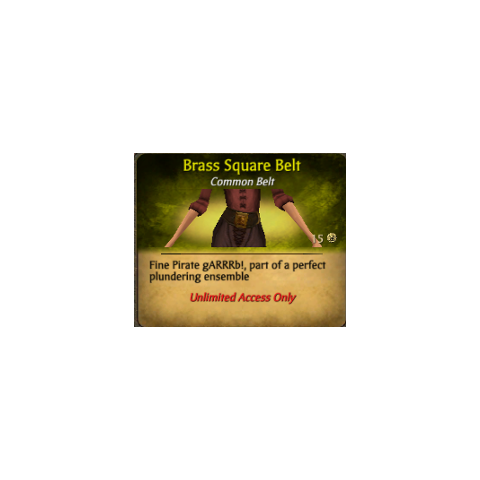 Brown Brass Square Belt