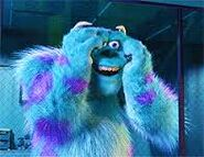 Sulley glad