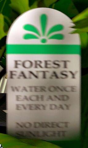 File:Forest Fantasy.jpg