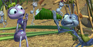 A Bug's Life Flik