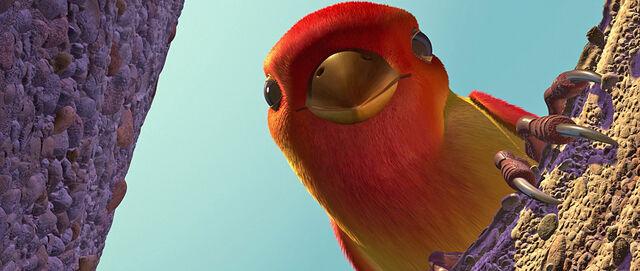 File:Oiseau2.jpg