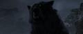 Brave-Bear4.png