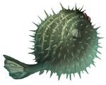 Qwilfish Arvalis