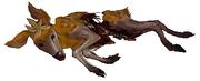 Deerling Forma Autunno Arvalis