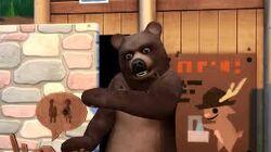 Niedźwiedź.jpg