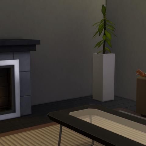 Diego przy swoim romantycznym kominku.