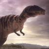CarcharodontosaurusPortrait