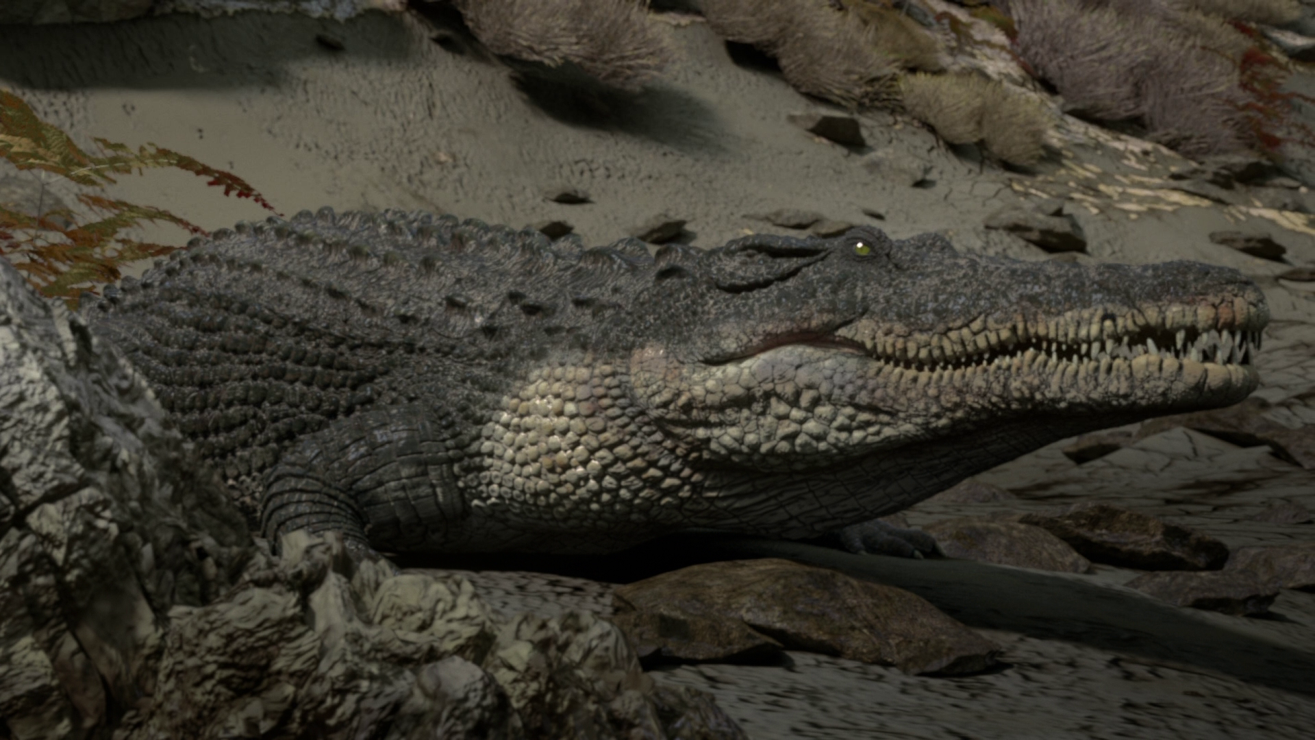 Image - CrocodileInfobox.png | Planet Dinosaur Wiki ...