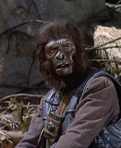 Gorilla officer1