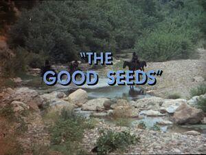 The Good Seeds