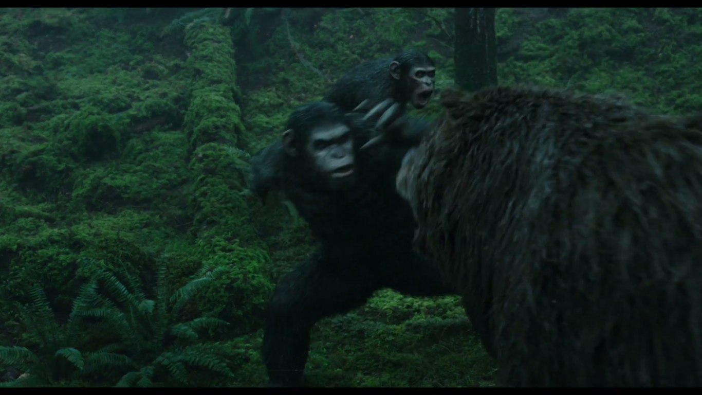 Dawn Of The Planet Of The Apes Bear