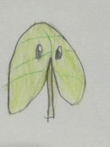 File:Lost leaf.jpeg
