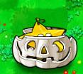 Starfruit Ipumpkin
