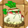 File:White Radish2.png