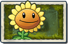 File:MISSING SUNGUN Lost City Seed Packet.png
