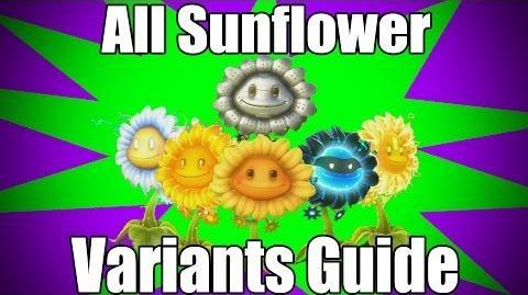 Sunflower Variants Guide