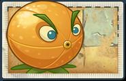 AE Citron