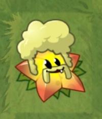 File:Starfruit Costume.jpg