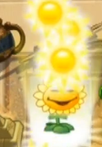 File:Sunsunsunsunsun.png
