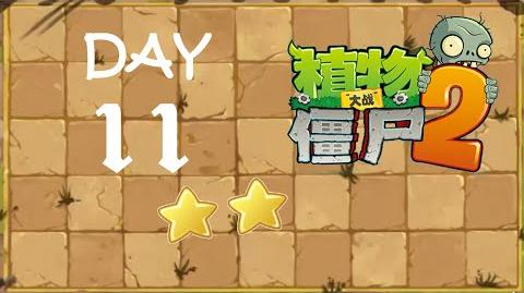 Kung Fu Day 11 SS