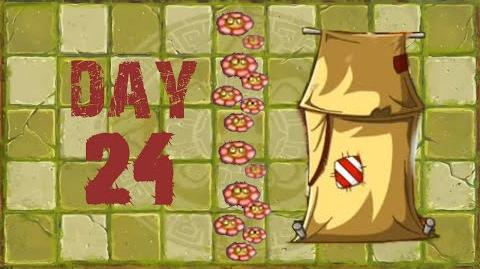 Lost City Day 24