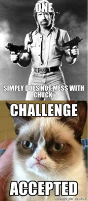 File:Chuck vs. Grumpy.jpg