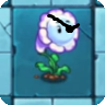 File:Bubble Flower pirate..png