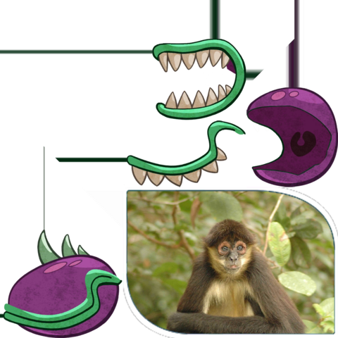 File:Chomper thing.png