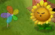 Sunflower Producing Sun